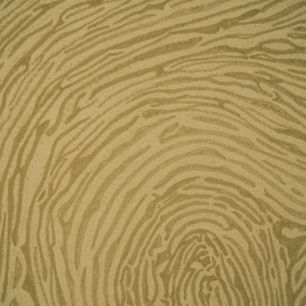 Close up shot of Thumb Print, Hawker's Cove, Cornwall
